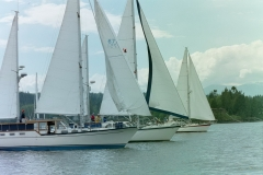 NC 40-44 at the start of Nauti Regatta 2002
