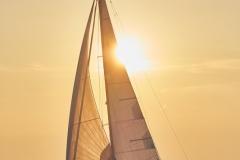 Sun-Odyssey-410.jpg-800px(5)