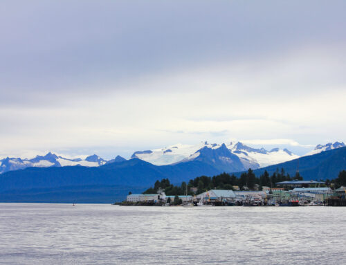 2019 Sail Alaska Update: 8/7/2019 | The Fleet sailing across Clarence Strait.